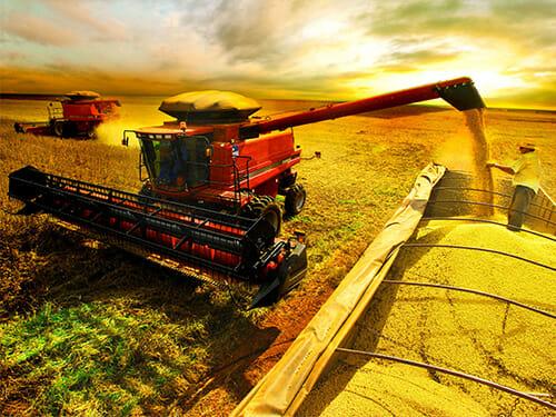 Agronegócio – exportações crescem 8,7%