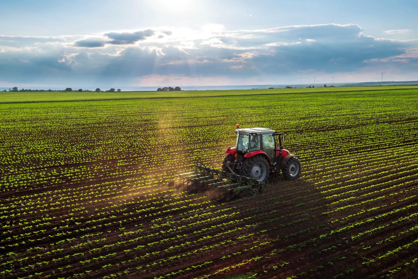 Apesar das turbulências, agronegócio segue expandindo as vendas externas