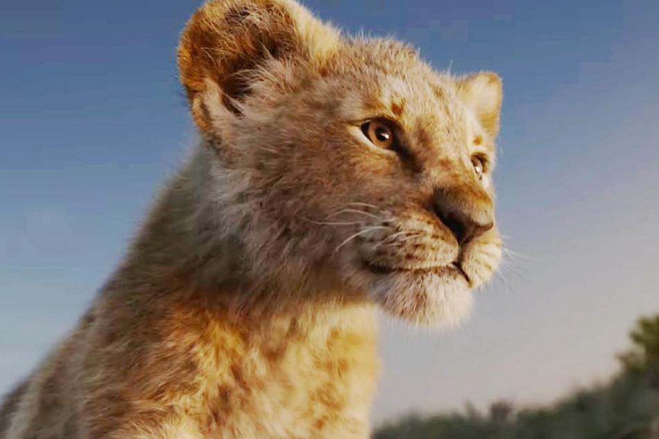 """O Que """"O Rei Leão"""" Nos Ensina Sobre O Sucesso Na Carreira"""