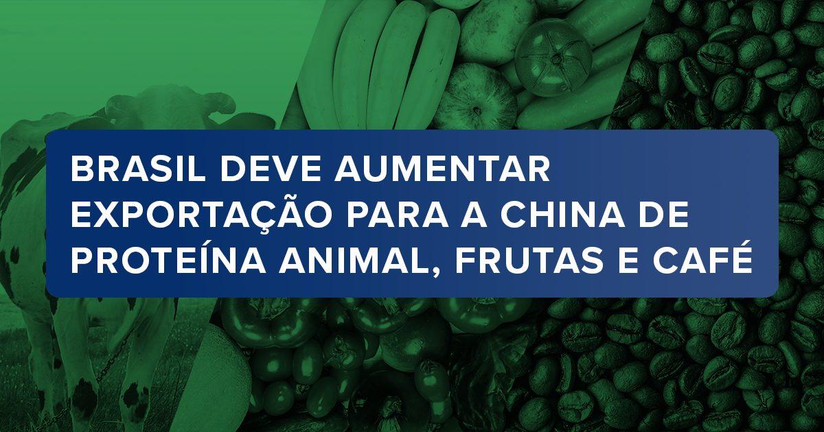 Brasil deve aumentar exportação para a China de proteína animal, frutas e café